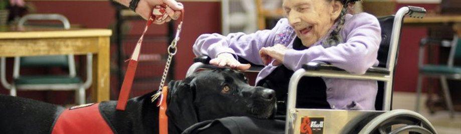 elderly_woman_dog