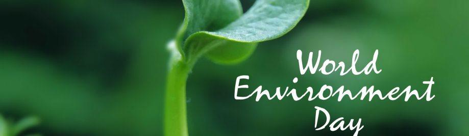 verdens-miljø-dag-billeder-fotos-0322134701