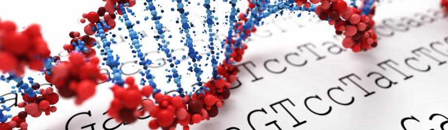 фон ДНК