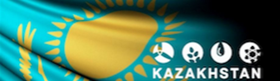 KZ-Veiligheidsraad